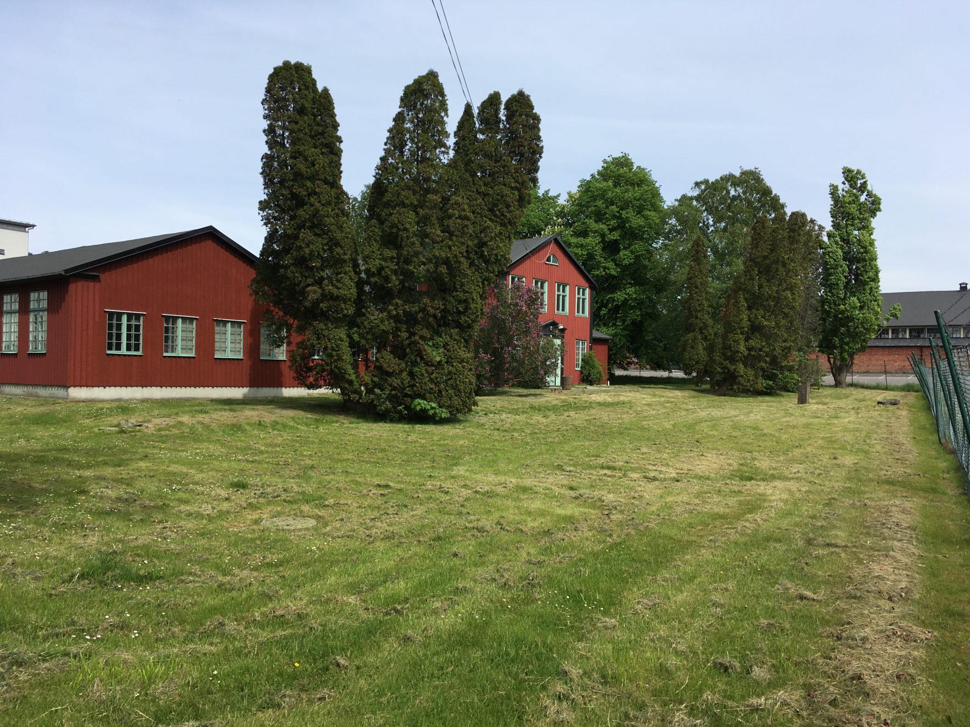 Kommersiell odlingsyta vid Kviberg