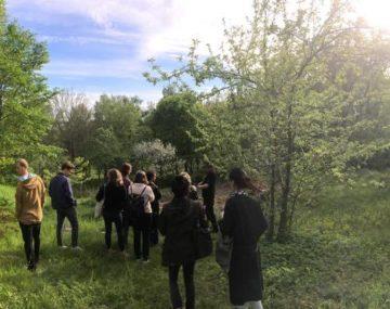 Färjenäs skogsträdgård