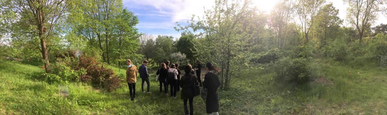Färjenäs Forest Garden