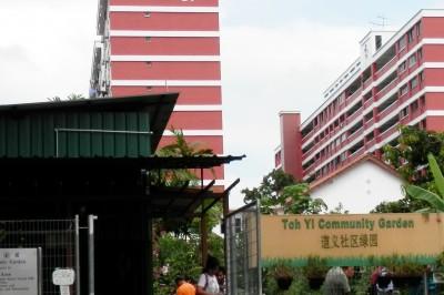Community Gardening in Singapore | Grow Gothenburg