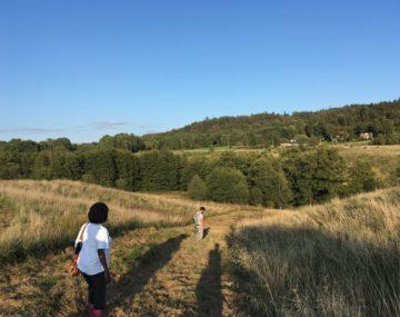 Stor odlingsyta – för grönsaksodling och agroforestry