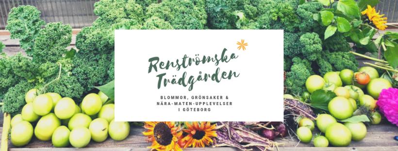 Renströmska Trädgården