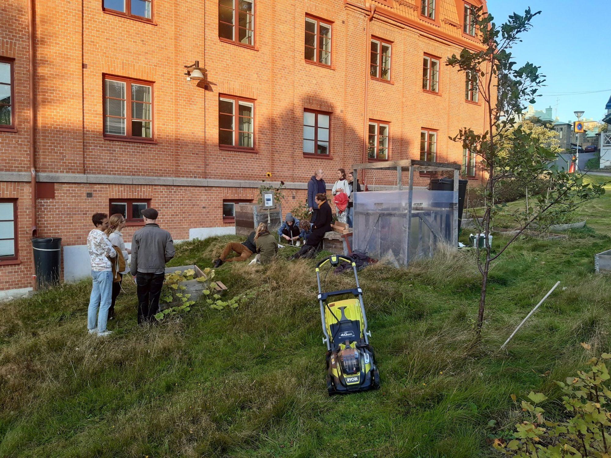 Urban Gardening at Global Studies Sidebar Picture